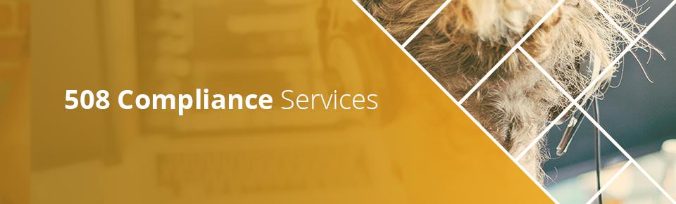 508 compliance services
